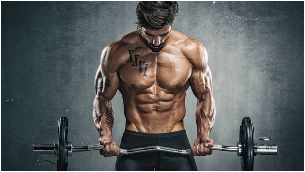 best Clenbuterol cycles to use