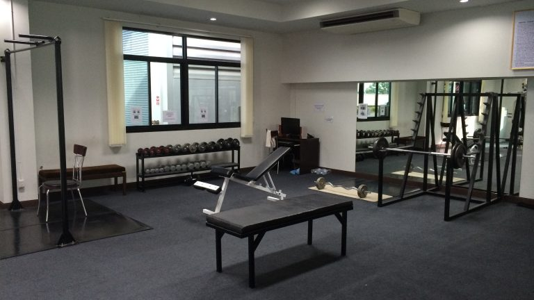 Gym Mirrors - Modern - Home Gym - dc metro - by Dulles Glass and Mirror